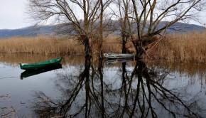 πλημμύρα τΕΝΆΓΗ