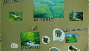 μαθημα γαλλικών