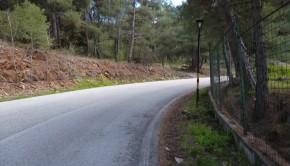 Δάσος Κορύλοβος