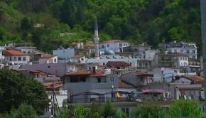 Εχίνος
