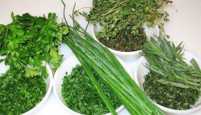 αρωματικά φυτα