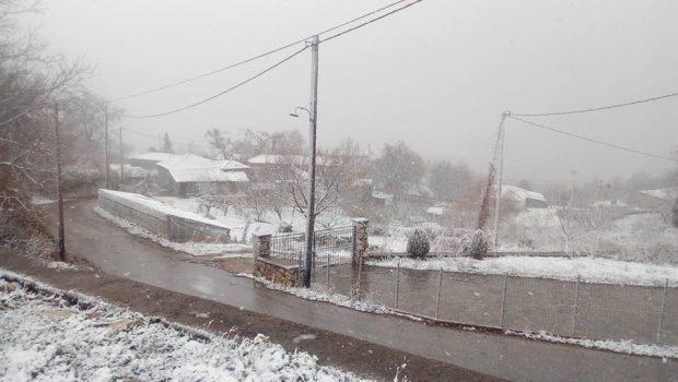 χιόνι νεστος