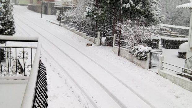 χιονι παγγαίο